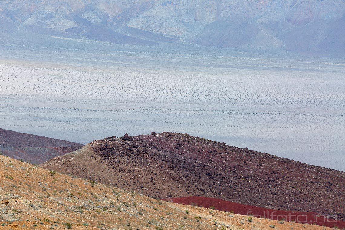Det er tørt i Panamint Valley, Death Valley National Park, Inyo County, California, USA.<br>Bildenr 20170415-088.