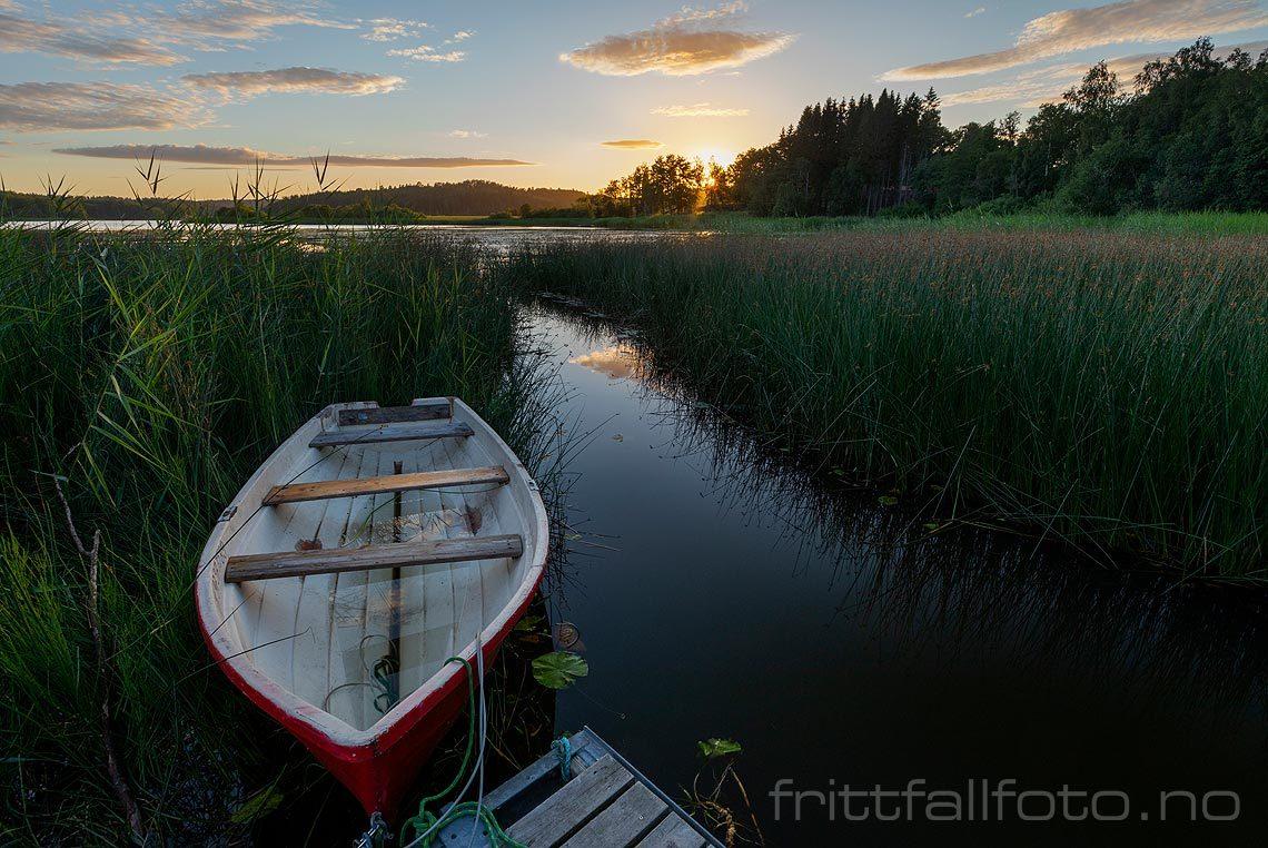 Sommerkveld ved Goksjø, Sandefjord, Vestfold og Telemark.<br>Bildenr 20200701-008.