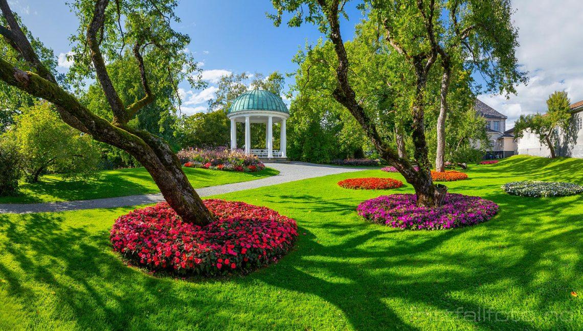 I Brekkeparken, Skien, Vestfold og Telemark.<br>Bildenr 20200904-075-080.